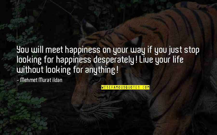 Anything For Your Happiness Quotes By Mehmet Murat Ildan: You will meet happiness on your way if