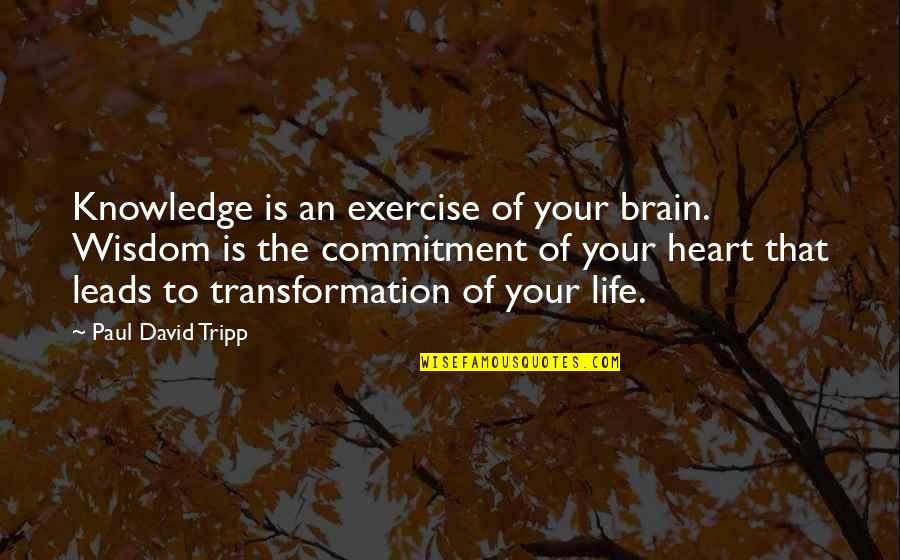 Apa 6th Referencing Direct Quotes By Paul David Tripp: Knowledge is an exercise of your brain. Wisdom