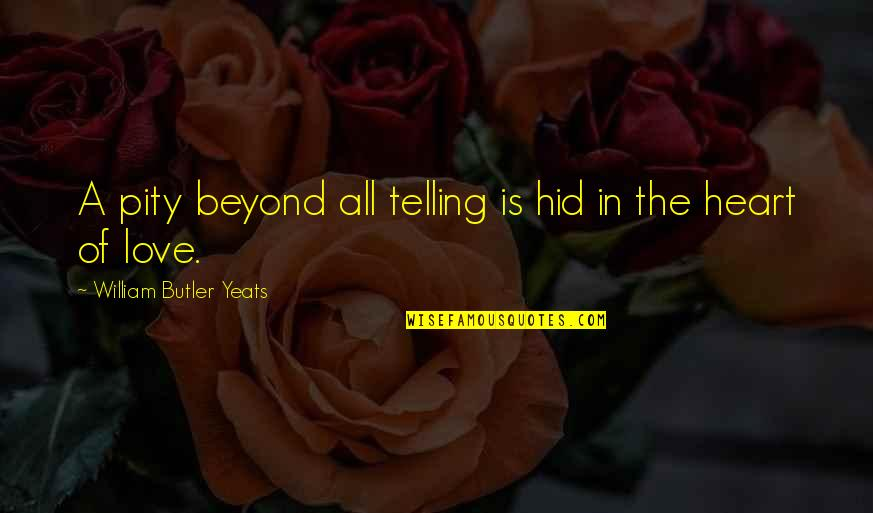 Apa Guidelines Citing Quotes By William Butler Yeats: A pity beyond all telling is hid in