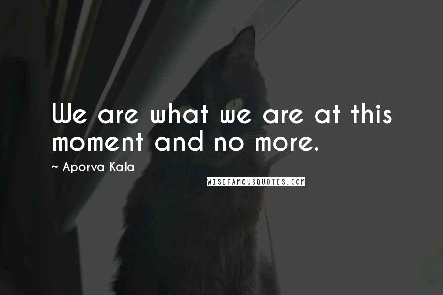 Aporva Kala quotes: We are what we are at this moment and no more.