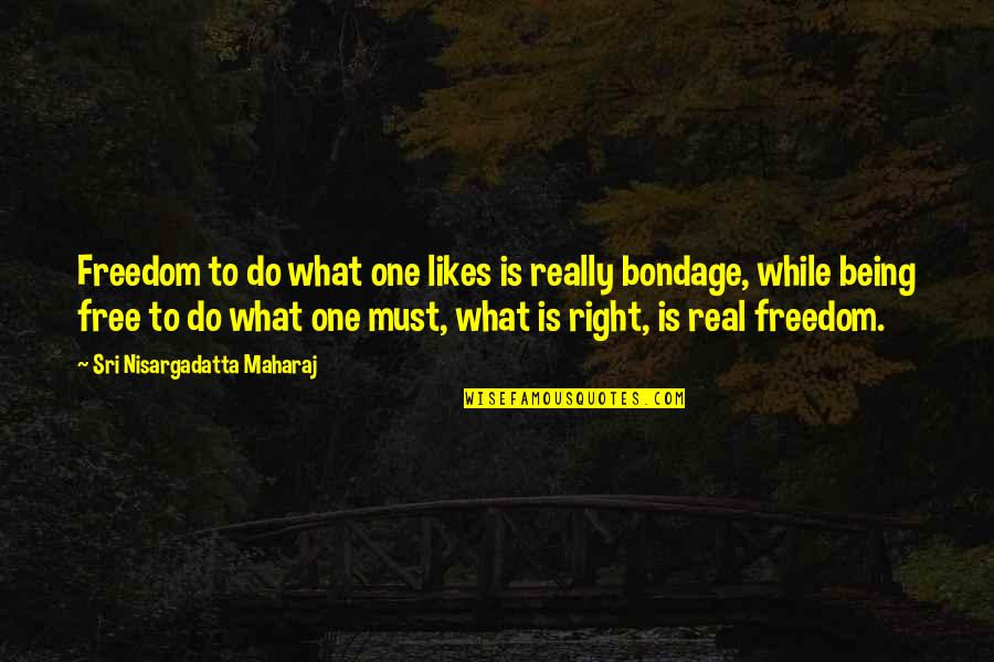 Apostles Paul's Quotes By Sri Nisargadatta Maharaj: Freedom to do what one likes is really