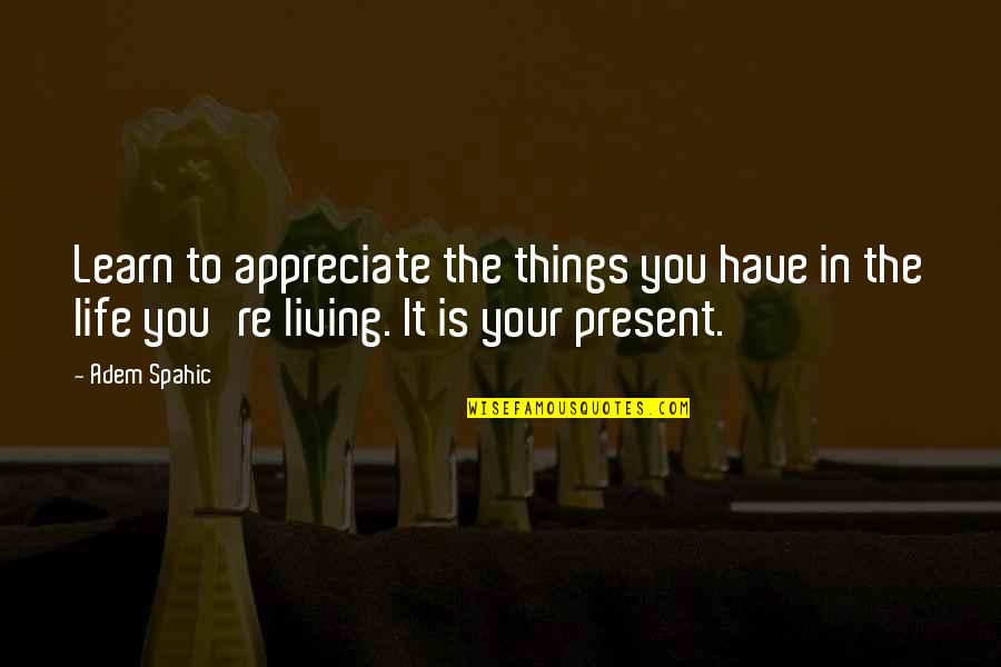 Appreciate The Things Quotes By Adem Spahic: Learn to appreciate the things you have in