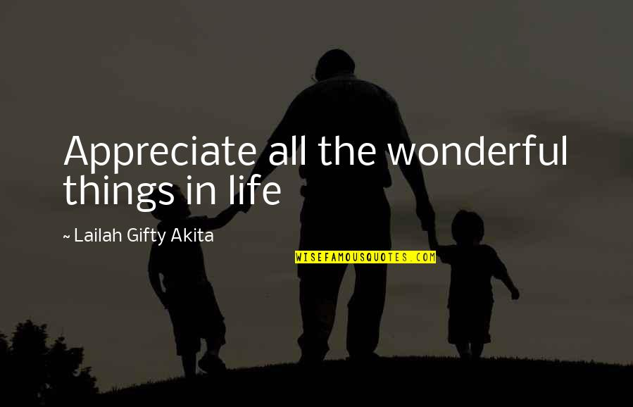 Appreciate The Things Quotes By Lailah Gifty Akita: Appreciate all the wonderful things in life