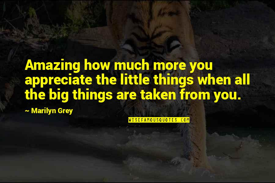 Appreciate The Things Quotes Top 57 Famous Quotes About Appreciate