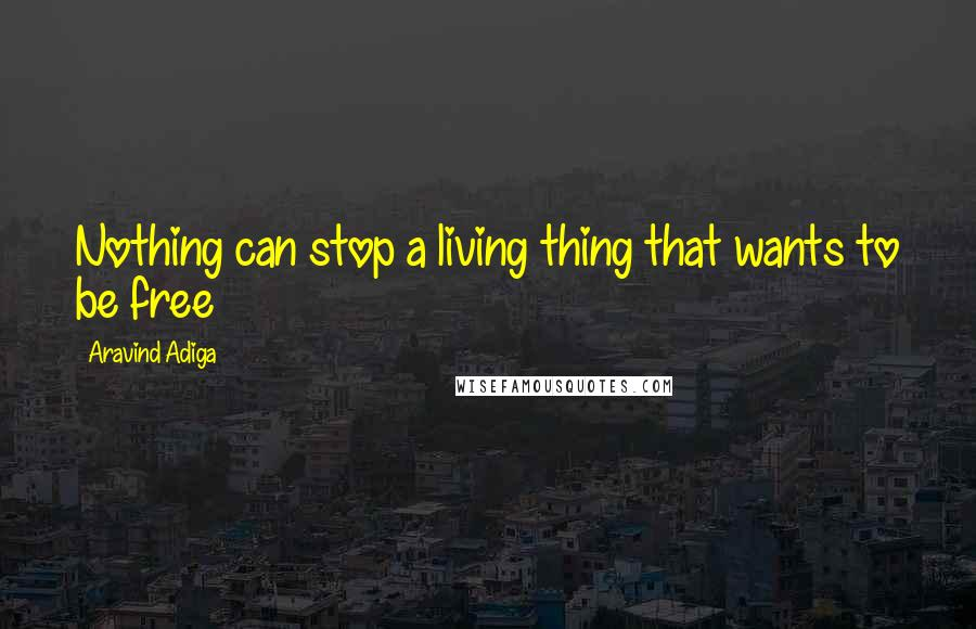 Aravind Adiga quotes: Nothing can stop a living thing that wants to be free