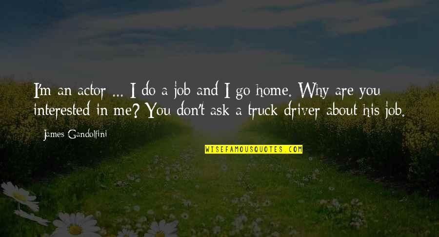Are You Interested Quotes By James Gandolfini: I'm an actor ... I do a job