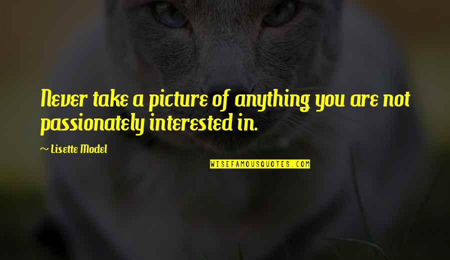 Are You Interested Quotes By Lisette Model: Never take a picture of anything you are