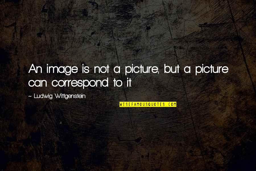 Are You Ok Picture Quotes By Ludwig Wittgenstein: An image is not a picture, but a