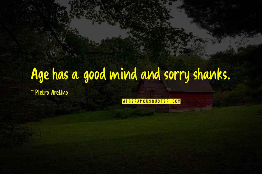 Aretino Quotes By Pietro Aretino: Age has a good mind and sorry shanks.