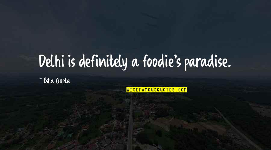 Arguing With Your Parents Quotes By Esha Gupta: Delhi is definitely a foodie's paradise.