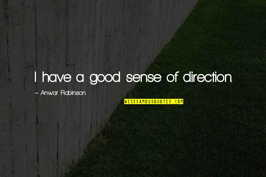 Arie Pencovici Quotes By Anwar Robinson: I have a good sense of direction.