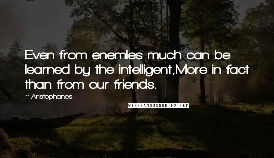 Aristophanes quotes: Even from enemies much can be learned by the intelligent,More in fact than from our friends.