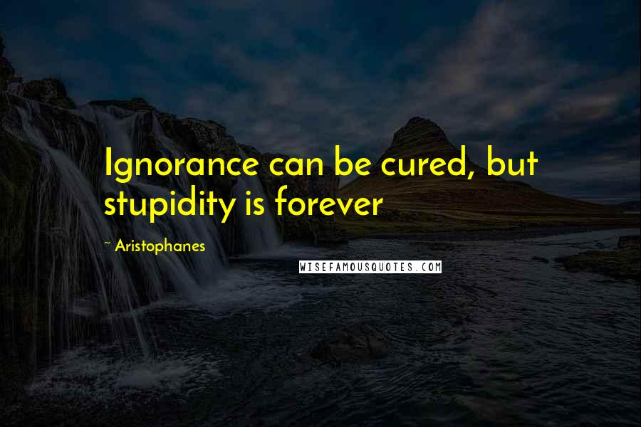 Aristophanes quotes: Ignorance can be cured, but stupidity is forever