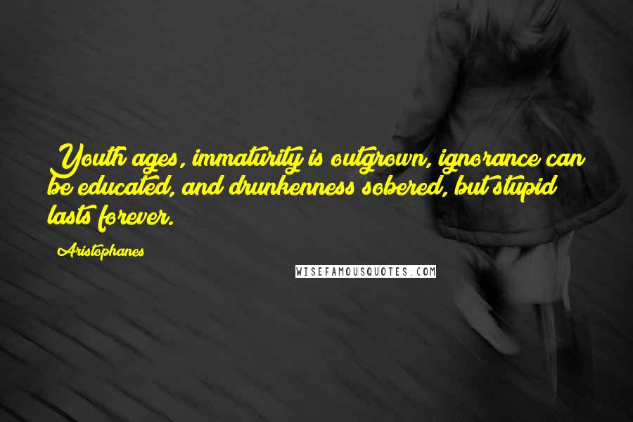 Aristophanes quotes: Youth ages, immaturity is outgrown, ignorance can be educated, and drunkenness sobered, but stupid lasts forever.