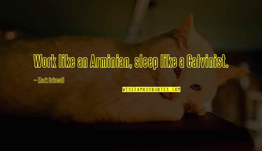 Arminian Quotes By Mark Driscoll: Work like an Arminian, sleep like a Calvinist.