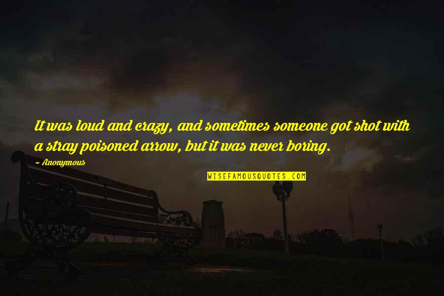 Arrow Quotes By Anonymous: It was loud and crazy, and sometimes someone