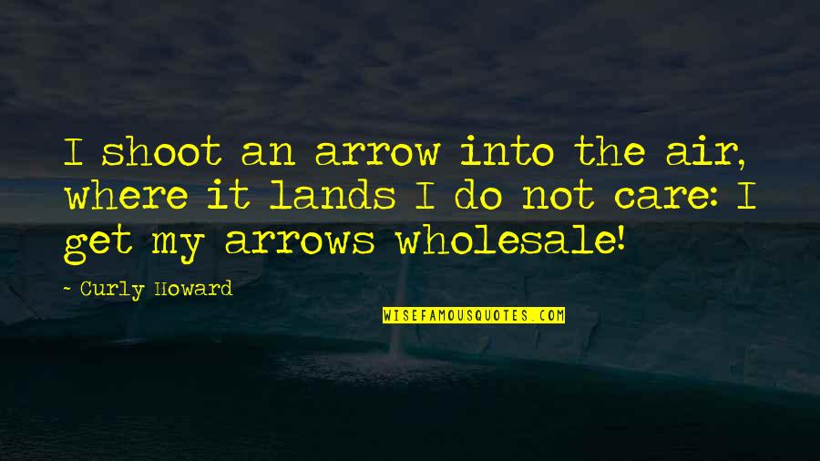 Arrow Quotes By Curly Howard: I shoot an arrow into the air, where