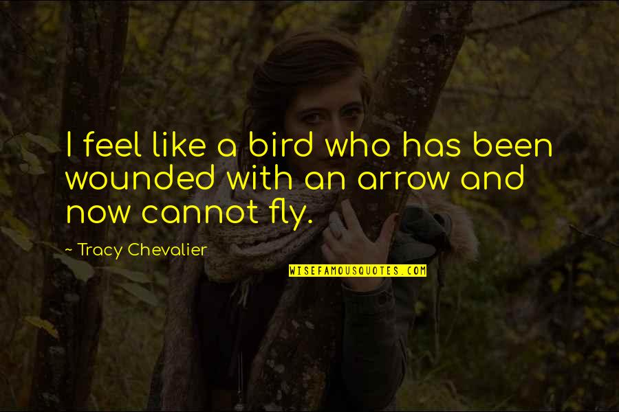 Arrow Quotes By Tracy Chevalier: I feel like a bird who has been