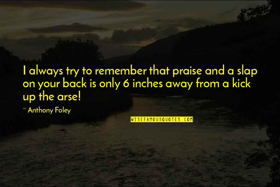 Arse Quotes By Anthony Foley: I always try to remember that praise and