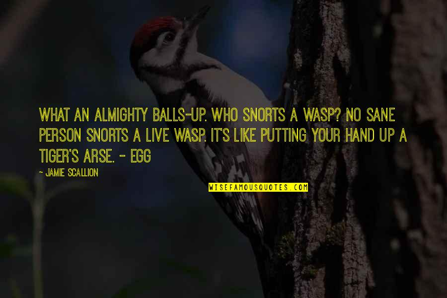 Arse Quotes By Jamie Scallion: What an almighty balls-up. Who snorts a wasp?