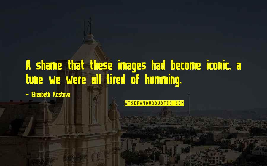 Art History Quotes By Elizabeth Kostova: A shame that these images had become iconic,