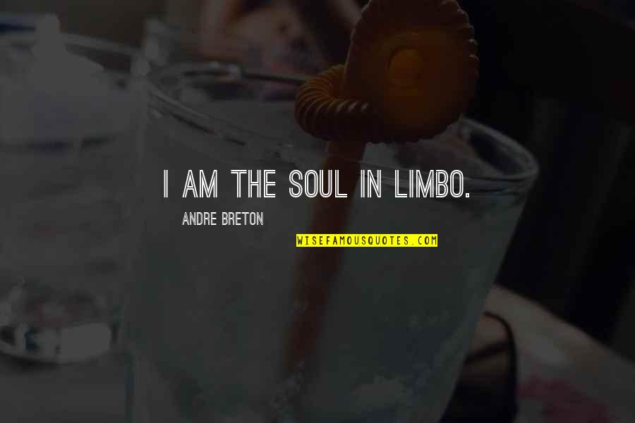 Art In Quotes By Andre Breton: I am the soul in limbo.