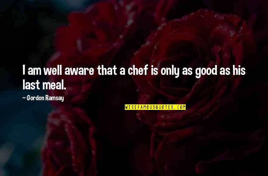 Art Is Therapy Quotes By Gordon Ramsay: I am well aware that a chef is
