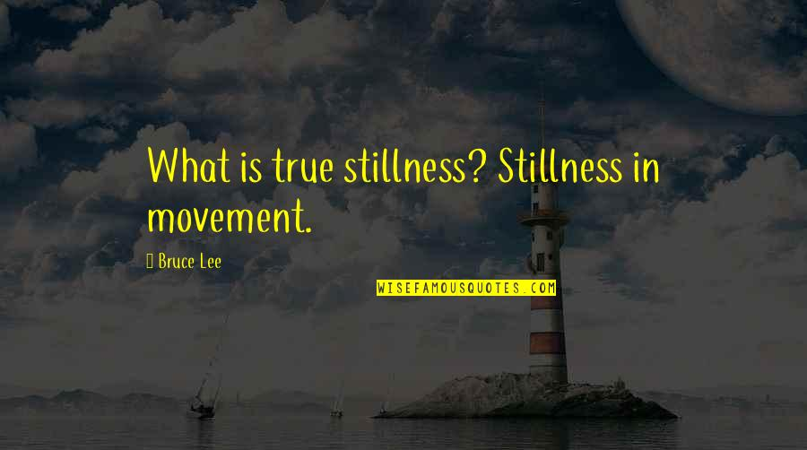 Art Of Stillness Quotes By Bruce Lee: What is true stillness? Stillness in movement.