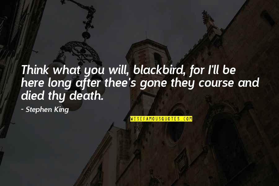 Artful Dodger Quotes By Stephen King: Think what you will, blackbird, for I'll be