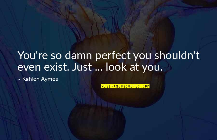 Arthur Shawcross Quotes By Kahlen Aymes: You're so damn perfect you shouldn't even exist.