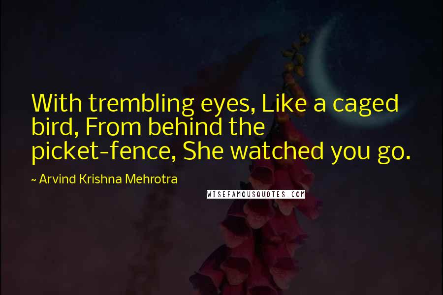 Arvind Krishna Mehrotra quotes: With trembling eyes, Like a caged bird, From behind the picket-fence, She watched you go.