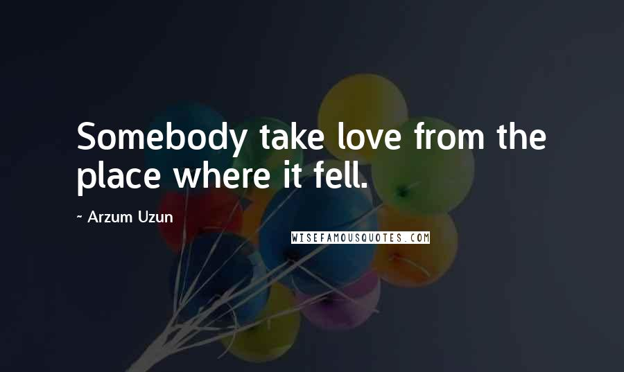 Arzum Uzun quotes: Somebody take love from the place where it fell.