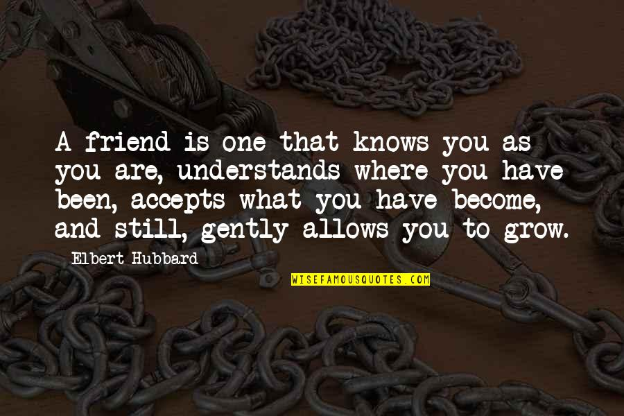 As A Friend Quotes By Elbert Hubbard: A friend is one that knows you as