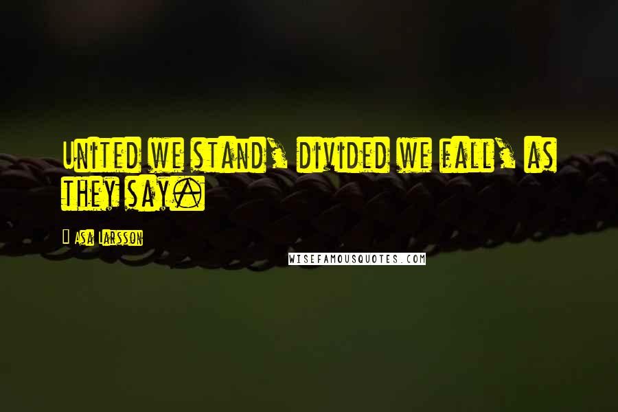 Asa Larsson quotes: United we stand, divided we fall, as they say.