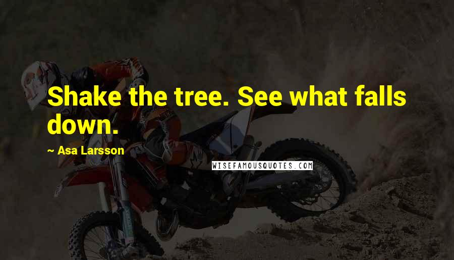 Asa Larsson quotes: Shake the tree. See what falls down.