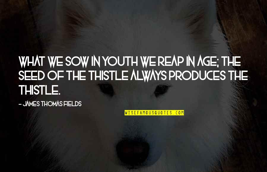 Asahi Quotes By James Thomas Fields: What we sow in youth we reap in