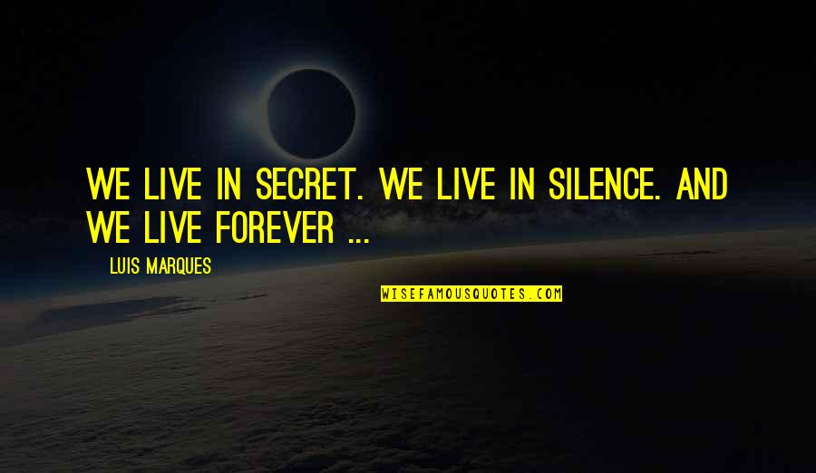 Asetka Quotes By Luis Marques: We live in Secret. We live in Silence.
