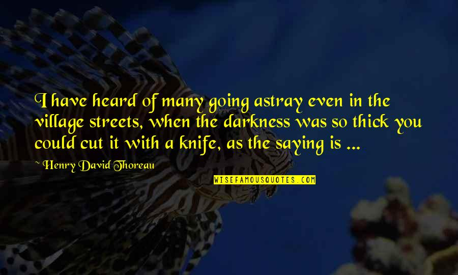 Astray Quotes By Henry David Thoreau: I have heard of many going astray even