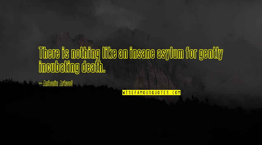 Asylums Quotes By Antonin Artaud: There is nothing like an insane asylum for