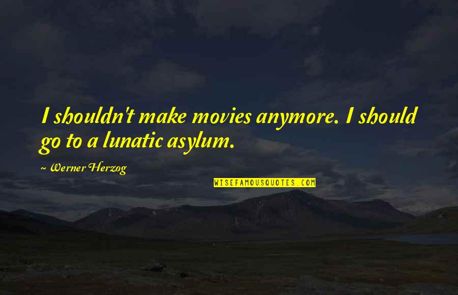 Asylums Quotes By Werner Herzog: I shouldn't make movies anymore. I should go