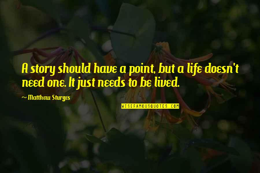 At Some Point Of Life Quotes By Matthew Sturges: A story should have a point, but a