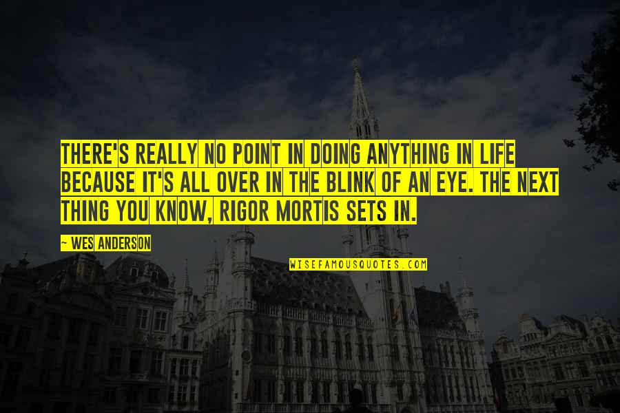 At Some Point Of Life Quotes By Wes Anderson: There's really no point in doing anything in
