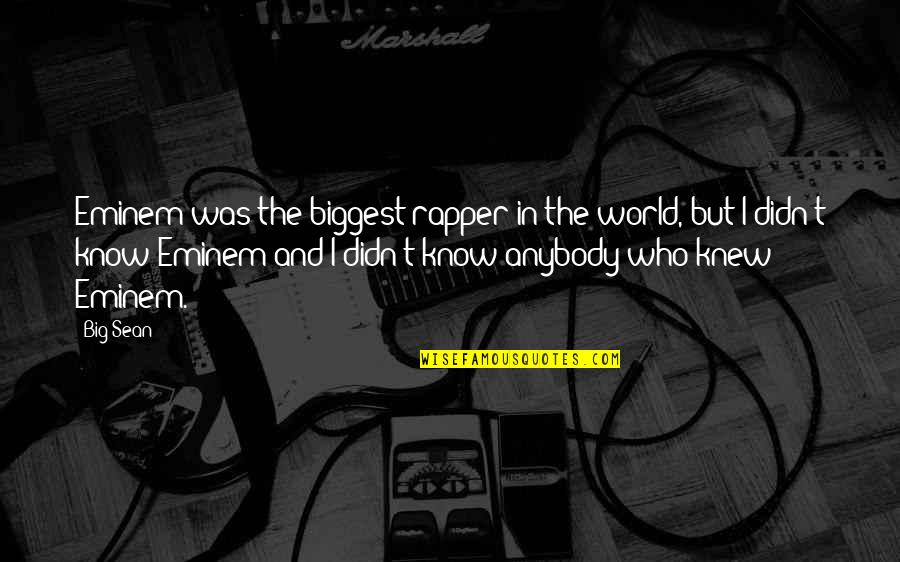 Atham Quotes By Big Sean: Eminem was the biggest rapper in the world,