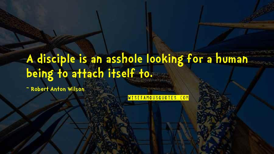 Attach Quotes By Robert Anton Wilson: A disciple is an asshole looking for a