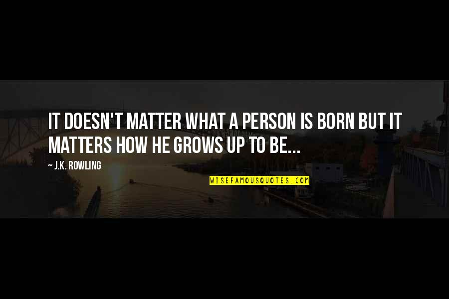 Attitude Doesn't Matter Quotes By J.K. Rowling: It doesn't matter what a person is born