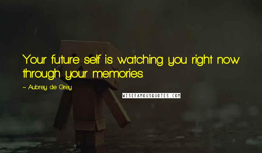 Aubrey De Grey quotes: Your future self is watching you right now through your memories.