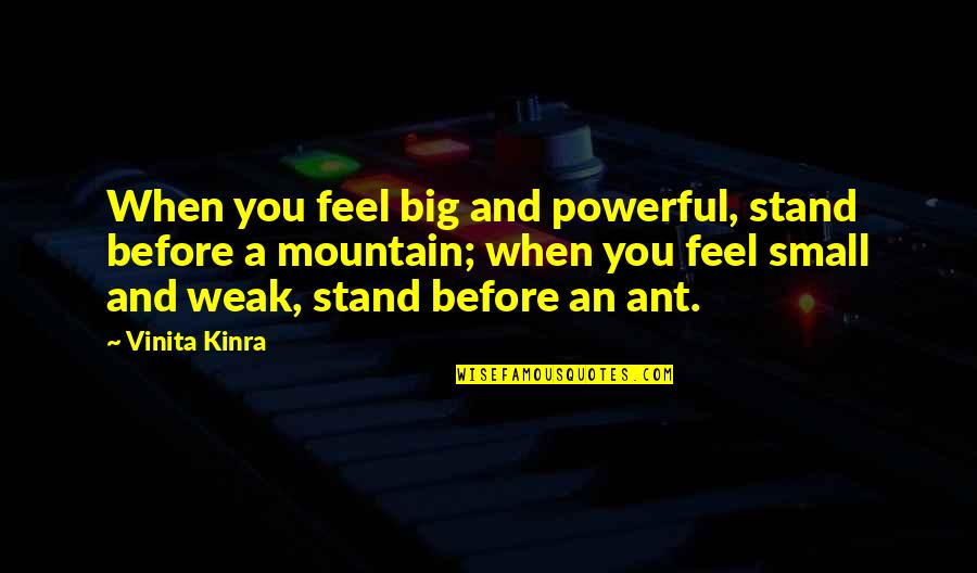 August Clearwing Quotes By Vinita Kinra: When you feel big and powerful, stand before