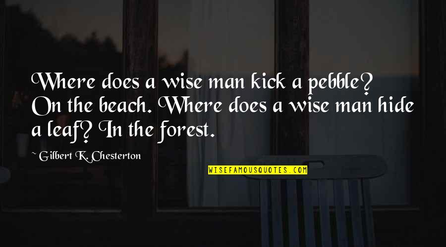 Authority Jeff Vandermeer Quotes By Gilbert K. Chesterton: Where does a wise man kick a pebble?