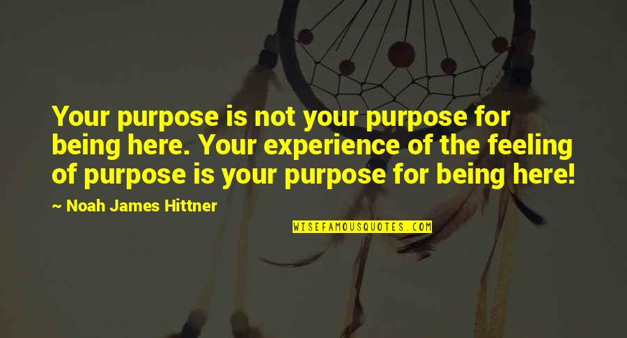 Author's Purpose Quotes By Noah James Hittner: Your purpose is not your purpose for being