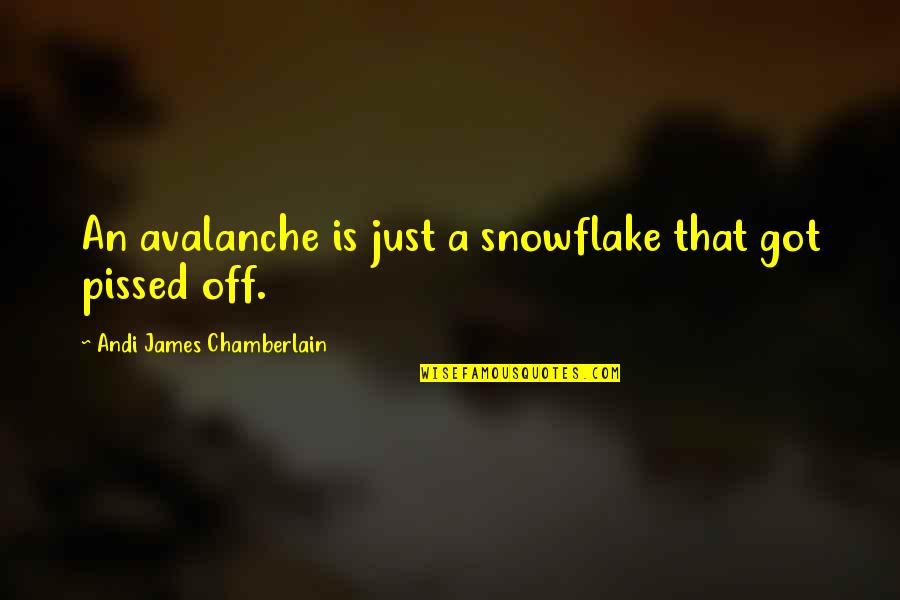 Avalanche Quotes By Andi James Chamberlain: An avalanche is just a snowflake that got